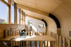 curved timber
